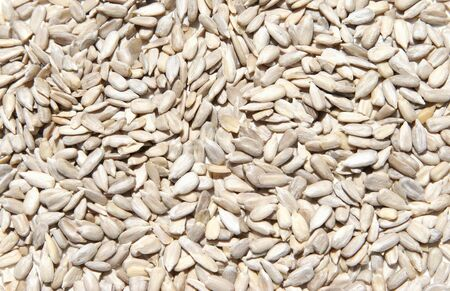 Close-up of hulled raw sunflower seeds. Stock Photo