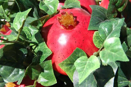 Close-up of red artificial pomegranates nestled in ivy. Shot with shallow DOF focusing on end of pomegranate.