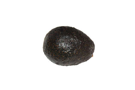 Close-up of black avocado or alligator pear isolated over white. Stock Photo