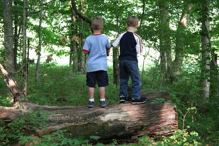 Two boys standing on a log in a forest. Stock Photo