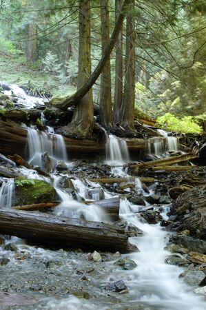 Stream Below Bridal Veil Falls in Bridal Veil Falls Provincial Park near Chilliwack, British Columbia. Stock Photo