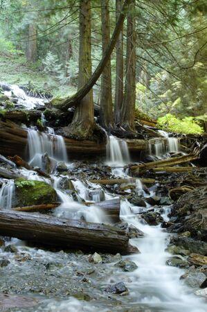 Stroom Hieronder Bridal Veil Falls in Bridal Veil Falls Provincial Park in de buurt van Chilliwack, British Columbia.