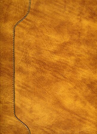 Scanned image of a portion of a yellow and tan leather briefcase.