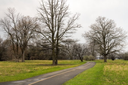 Leafless trees in a park with a bike path running through it  Stock Photo