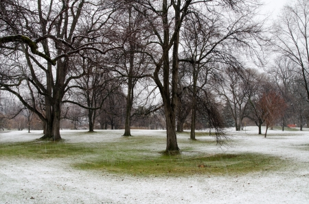 The snow falls for the first time this winter in the Central Experimental Farm and Arboretum in Ottawa, Ontario, Canada Stock Photo - 16793595