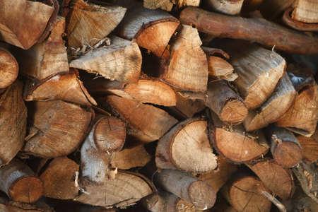 Makro Schuss von Baum-Rinde-Textur mit interessanten Formen  Standard-Bild - 6448530