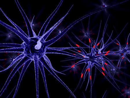 transgenic: 3D Illustration of neuronal cells.