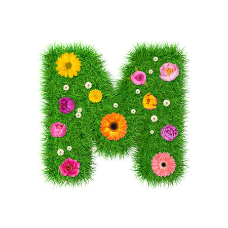 Letter M made of grass and colorful flowers, spring concept for graphic design collage. Stock Photo