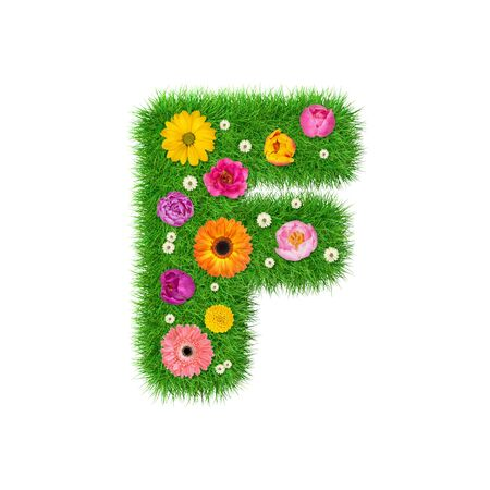 Letter F made of grass and colorful flowers, spring concept for graphic design collage.