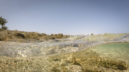 View of the beach on the background of palm trees and the bottom of the sea. Underwater split shot photos