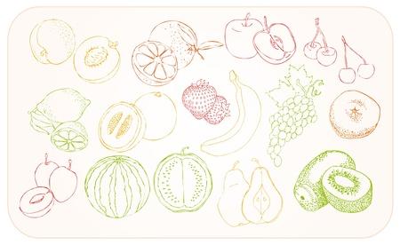 set of stylized fruit drawing Illustration