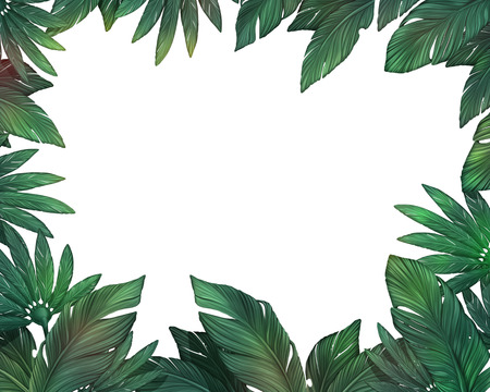 Tropical leaves frame