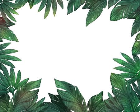 pflanzen: Tropische Blätter Rahmen Lizenzfreie Bilder