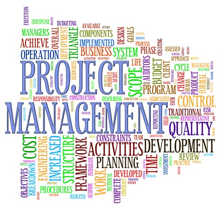 manager: Illustration of word tage of project management