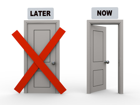 postpone: 3d illustration of closed later door and open door having word now. Concept of work hard now and enjoy later.