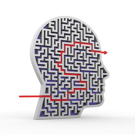 solved maze puzzle: 3d illustration of solved human face shape maze puzzle labyrinth