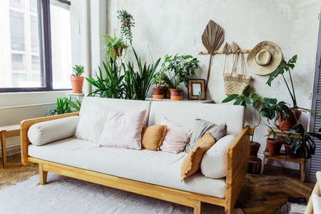 Light sofa with pillows against a gray wall. There are many pots of green plants behind the sofa. Horizontal photo