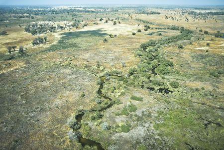 Inland delta - Okavango Delta, Botswana Stock Photo - 5707536