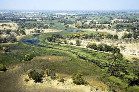 Inland delta - Okavango Delta, Botswana Stock Photo - 5707543