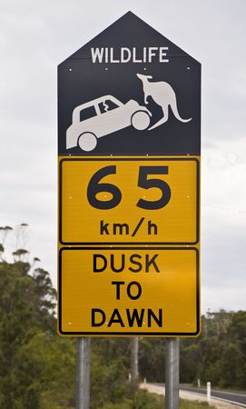 Road sign alerting to the presence of kangaroos and its danger photo