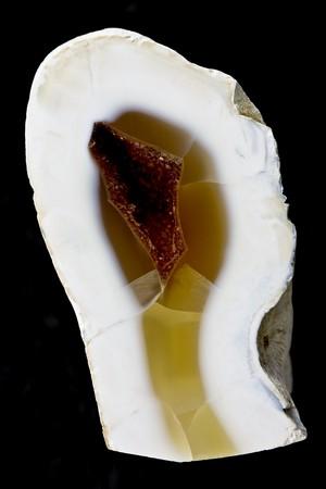 Chalcedony geode specimen on black background