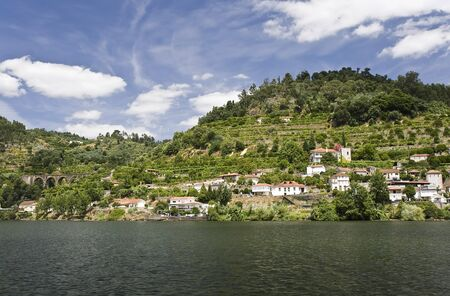 Banks of the Douro River photo