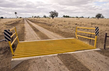 cattle grid: Road Grid