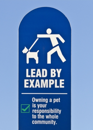 lead rope: Leading by Example