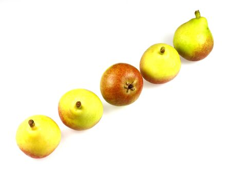 bella: Paradise pears also known as Faccia Bella Pears