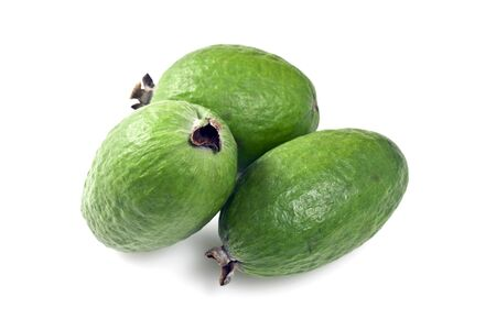 feijoa: Feijoa  Acca sellowiana  Stock Photo