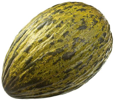 christmas frog: Piel de Sapo Melon