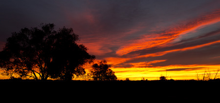 new day: Beginning of a new day in the Australian outback
