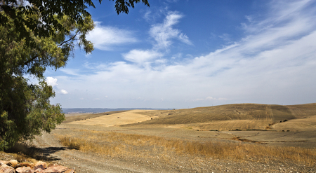 outskirts: View of the fields on the outskirts of Cordoba, Spain, on a hot summer day