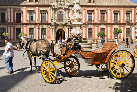 driven: Many typical old horse driven carriages wait for the tourists business by the Cathedral of Seville, Spain