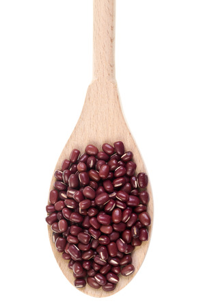 angularis: The adzuki bean, Vigna angularis, popular in Japanese cooking is an annual vine widely grown throughout East Asia and the Himalayas for its small (5 mm) bean