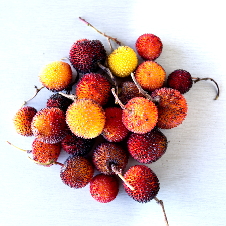 Edible red berries of the arbutus tree or shrub, native to warm temperate Mediterranean regions.