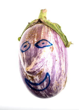 Curious image of a graffiti eggplant distinguished shape and the variegated coloring of its skin, vivid and loosely stripped violet and ivory white
