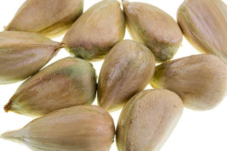 Detail of multiple bunya pine seeds Stock Photo