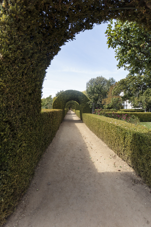 Gallery of tailored boxwood hedges and arches in the gardens of Mateus Palace, Vila Real Portugal