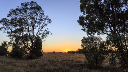 Early morning, at sunrise, in central New South Wales, on the Newell Highway near Parkes