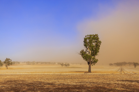 Dust storm blowing over the agricultural fields between Wagga Wagga and Temora, New South Wales Stok Fotoğraf