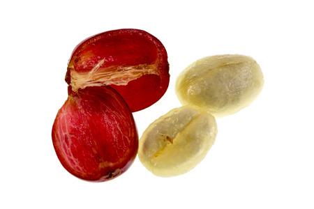 Vista de la anatomía de un fruto de cereza de café fresco con la sección externa compuesta por piel y pulpa, en rojo en la imagen, y la sección interna o semilla con dos mitades adyacentes cubiertas por el mucílago