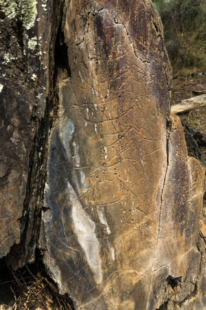 The Prehistoric Rock Art site of the Coa Valley is an open air Upper Paleolithic archaeological site in northeast Portugal