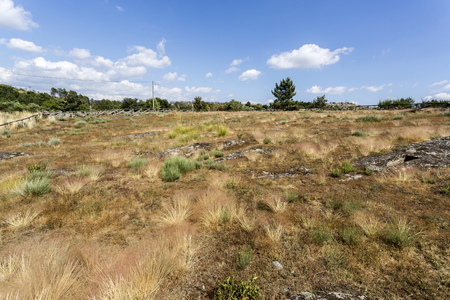 Panoramic view of the Early Middle Ages Necropolis of Forcadas with more than twenty sepultures, or burial sites, cut on the rock near Fornos de Algodres, Beira Alta, Portugal Stok Fotoğraf
