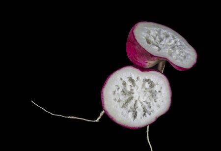 View of a transverse section of an overgrown radish showing a spongious and woody inside cavity. Фото со стока