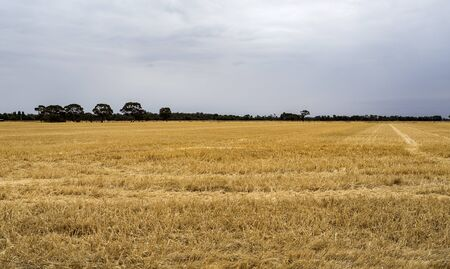 Panoramic view of the extensive agricultural fields along the inland roads throughout New South Wales, in Australia