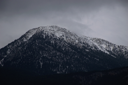 Moody mountain landscape with black and white texture of trees