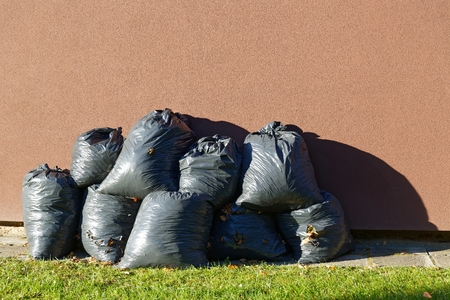 harsh light: Black plastic bags in harsh light with leaves trash collected in autumn