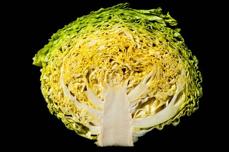 Cross section of a 'simple cabbage' revealing its internal complexity