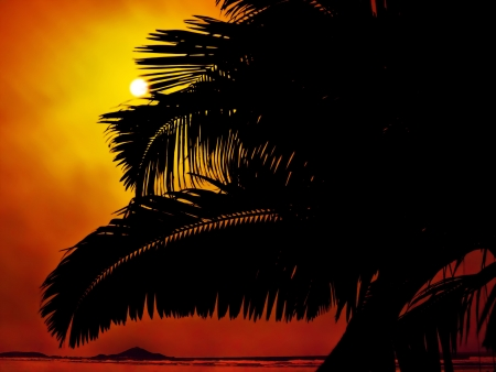 Shape of palms tree at sunset in the beach photo